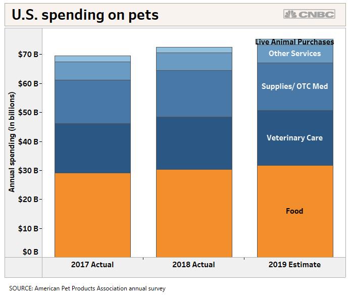 Walmart to open dozens of vet clinics, launch online pet pharmacy